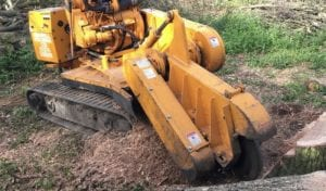 tracked stump grinder hire